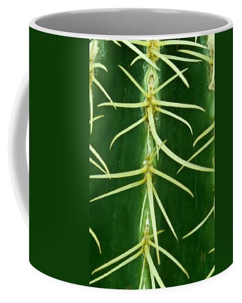Cactus Coffee Mug featuring the photograph Cactus spines closeup by Douglas Barnett