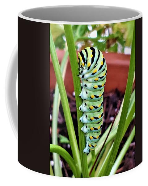 Caterpillar Coffee Mug featuring the photograph Caterpillar by Rob Hans