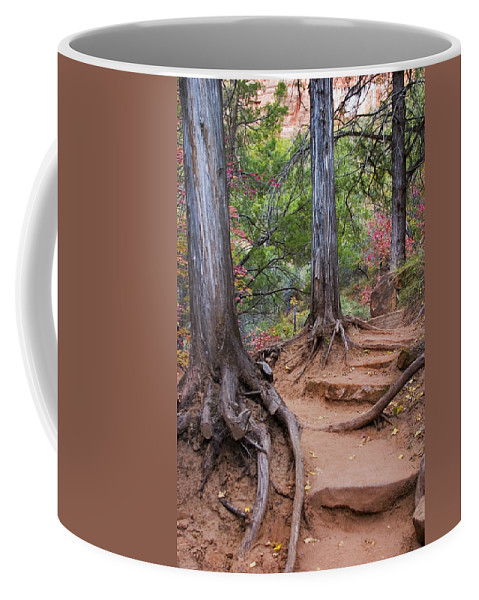 3scape Coffee Mug featuring the photograph Colors of Zion by Adam Romanowicz