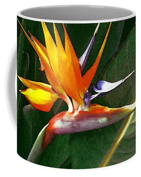 Bird Of Paradise Coffee Mug featuring the photograph Crane Flower by James Temple