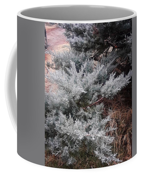 Scenery Coffee Mug featuring the photograph First Frost by Ariana Torralba