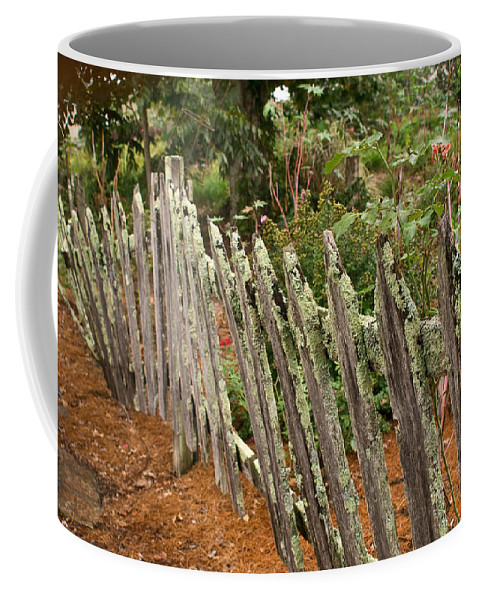 Garden Coffee Mug featuring the photograph Garden of peace by Douglas Barnett