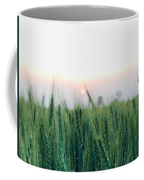 Lanscape Coffee Mug featuring the photograph Greenery by Prashant Dalal