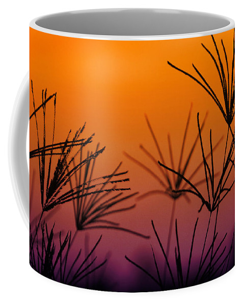 Nature Coffee Mug featuring the photograph I Love a Sunburnt Country by Holly Kempe
