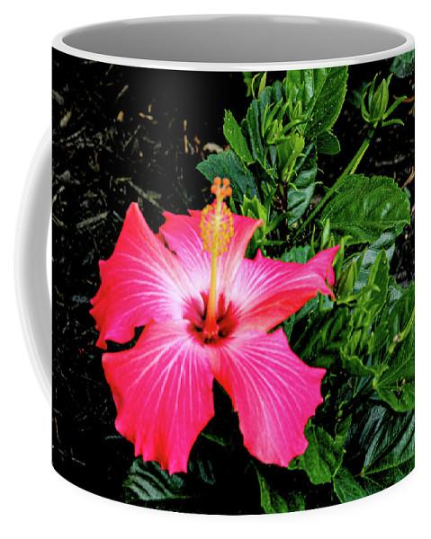 Flower Coffee Mug featuring the digital art La cayena by Daniel Cornell