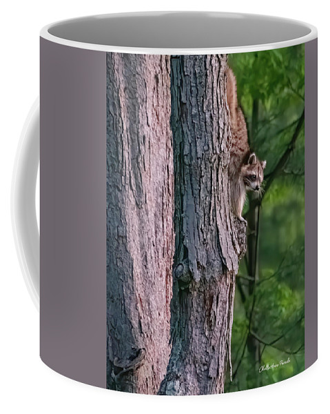 Racoon Coffee Mug featuring the photograph Making a late night snack run by ChelleAnne Paradis