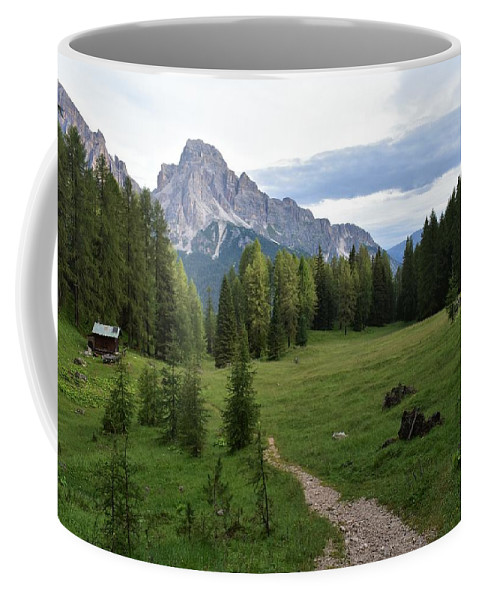Dolomites Coffee Mug featuring the photograph Meadow in the dolomites by Luca Lautenschlaeger