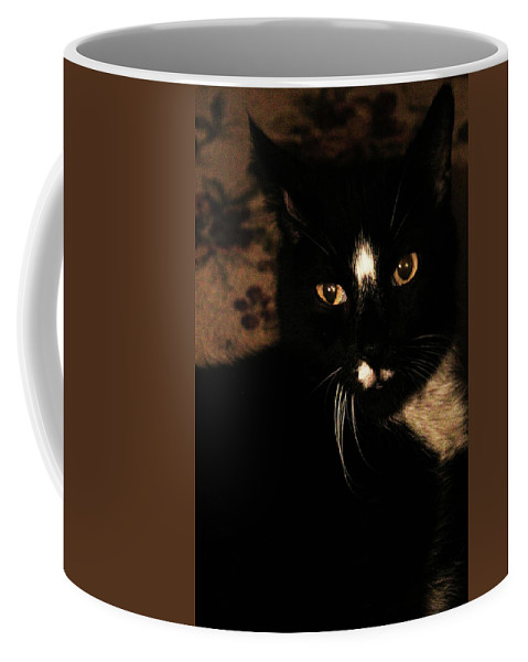 Cat Coffee Mug featuring the photograph Mr. Tuxedo by Holly Morris