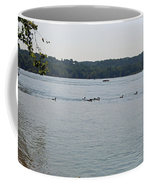 Nature Coffee Mug featuring the photograph On The River by Holly Morris
