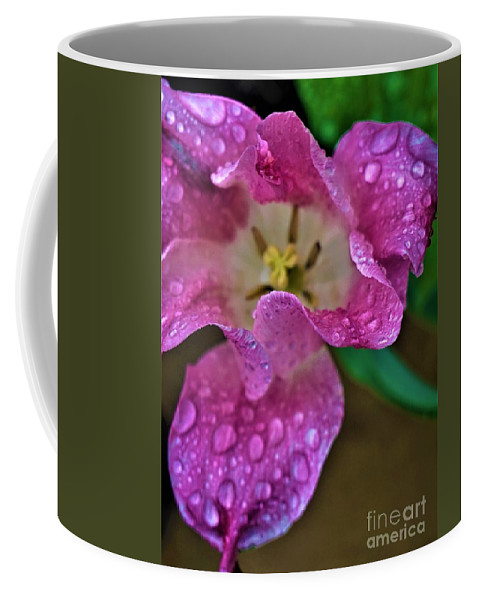 Tulip Coffee Mug featuring the photograph Open Tulip by Jimmy Clark