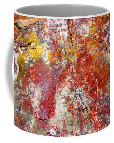 Petrified Wood Stone Texture Abstract Color Skip Hunt Coffee Mug featuring the photograph Painted Desert Wood 1 by Skip Hunt