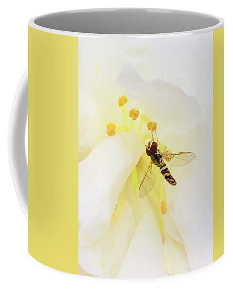 Bee Coffee Mug featuring the photograph Pollen Popping by Michael Stothard