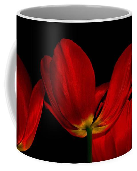 Flowers Coffee Mug featuring the photograph Red Silk by Linda Sannuti