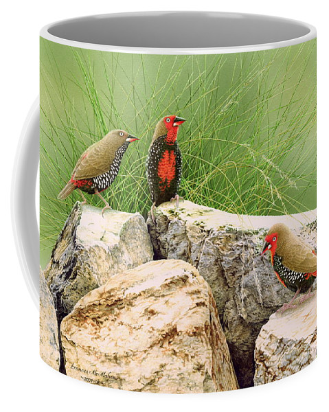 Bird Coffee Mug featuring the painting Rock Stars - Painted Finches by Frances McMahon