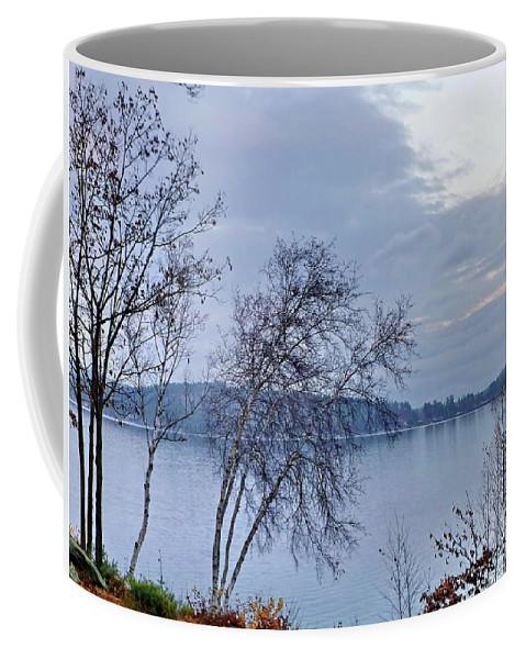 Fall Coffee Mug featuring the photograph Sad Autumn Evening by Lyuba Filatova