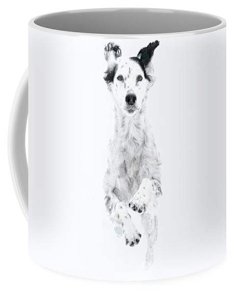 Snow Dog Coffee Mug featuring the photograph Snow Dog, English Setter by Zayne Diamond Photographic