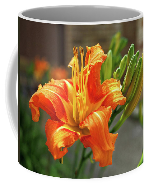Orange Coffee Mug featuring the photograph Spring Flower 14 by C Winslow Shafer