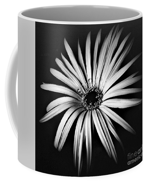 Photo Coffee Mug featuring the photograph Star by Alex Caminker