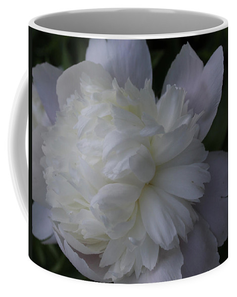 Nature Coffee Mug featuring the photograph White Peony Flower by Holly Morris