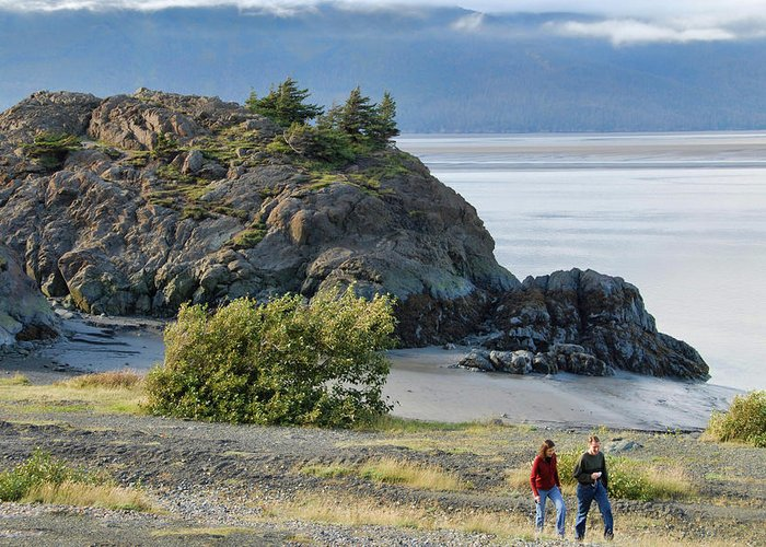 Alaska Greeting Card featuring the photograph Beluga Point by Dyle  Warren