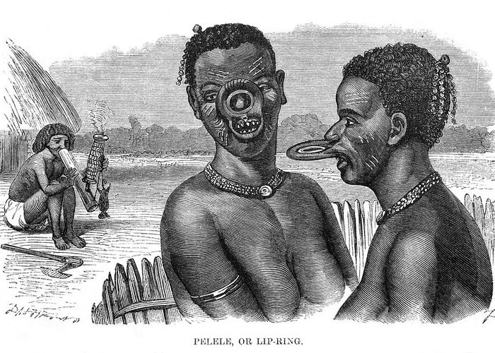 Body Greeting Card featuring the drawing Lip-rings Of Two African Native Women by Mary Evans Picture Library
