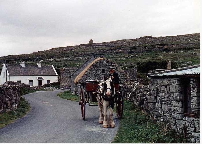 Horse Greeting Card featuring the photograph Making A Living On Inishmore - Aran Islands - Ireland by Nina-Rosa Duddy