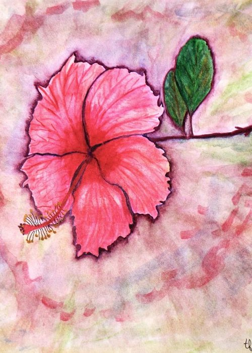 Hibiscus Greeting Card featuring the painting Pink Hibiscus by Terry Fleckney