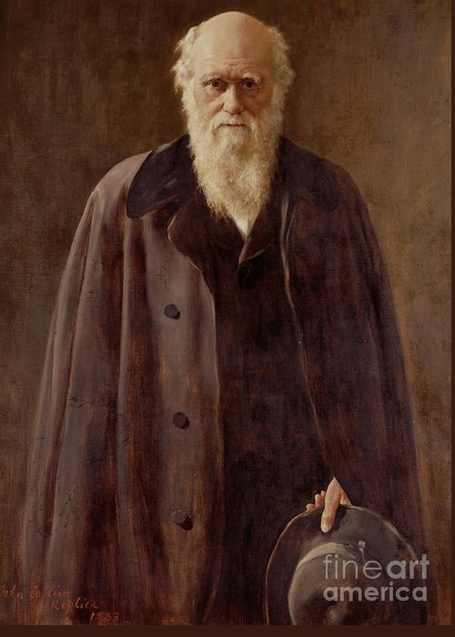 Male; Hat; Coat; White Beard; Scientist; Three-quarter Length; Serious; Science; Medicine; Zoology; Victorian; Pioneer; Evolution Greeting Card featuring the painting Portrait Of Charles Darwin by John Collier