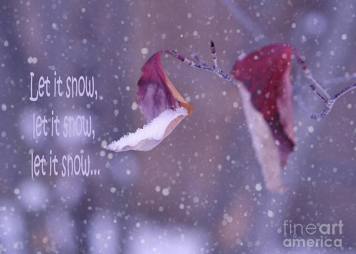 Purple Winter Greeting Card featuring the photograph Purple Winter by Irina Wardas