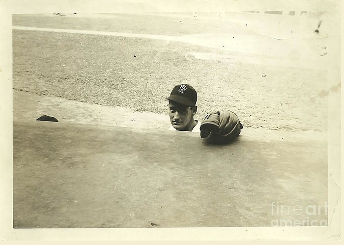 Ted Williams Greeting Card featuring the photograph Ted Williams by Diane Diederich