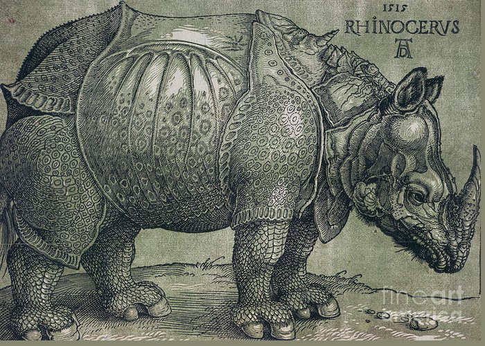 Woodprint; Rhino; Northern Renaissance; Wild; Animal; Mammal; Horn; Endangered Species; Print; Zoology Greeting Card featuring the drawing The Rhinoceros by Albrecht Durer