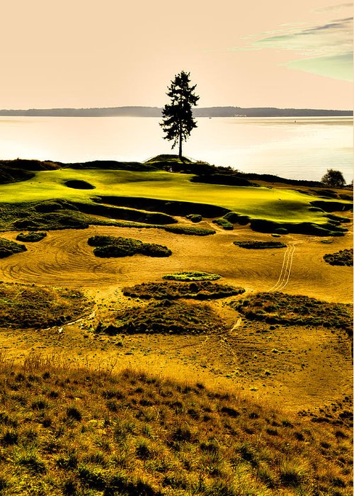 Chambers Bay Golf Course Greeting Card featuring the photograph #15 At Chambers Bay Golf Course - Location Of The 2015 U.s. Open Tournament by David Patterson