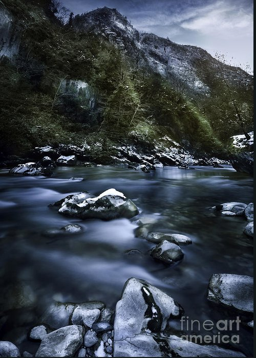Georgia Greeting Card featuring the photograph A River In A Forest, Ritsa Nature by Evgeny Kuklev