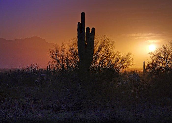 Sunrise Greeting Card featuring the photograph A Sonoran Morning by Saija Lehtonen