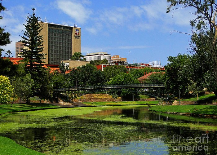 Nature Greeting Card featuring the photograph Adelaide 2 by Ben Yassa