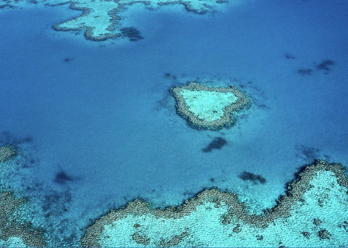 Scenics Greeting Card featuring the photograph Aerial Of Heart-shaped Reef At Hardy by Holger Leue