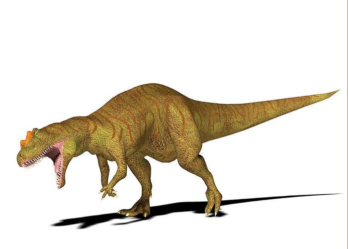 Nobody Greeting Card featuring the photograph Allosaurus Dinosaur by Friedrich Saurer