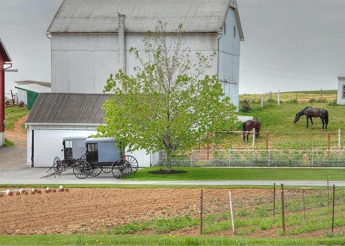 Country Greeting Card featuring the photograph An Amish Farm by Dyle  Warren