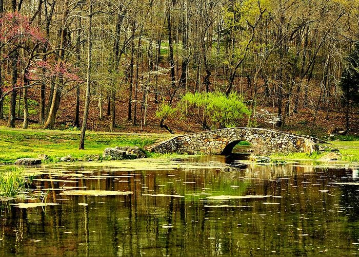 Arkansas Greeting Card featuring the photograph Arkansas Tranquility by Benjamin Yeager
