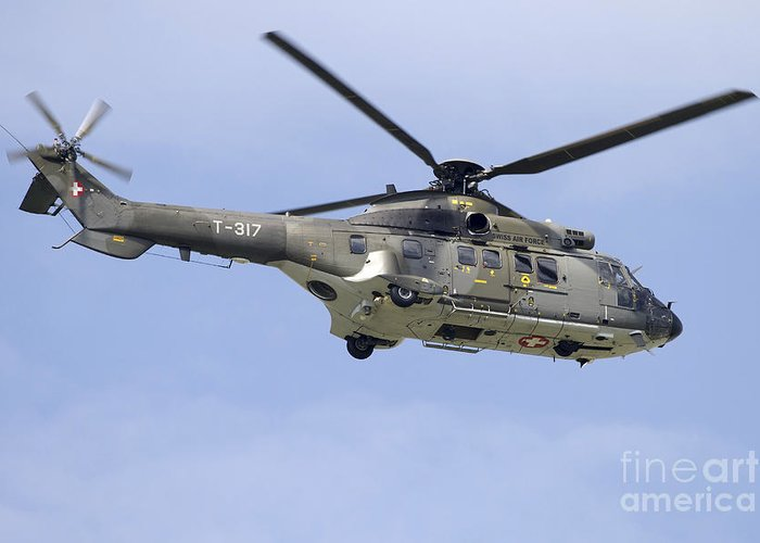 Super Puma Greeting Cards f3301c19f2