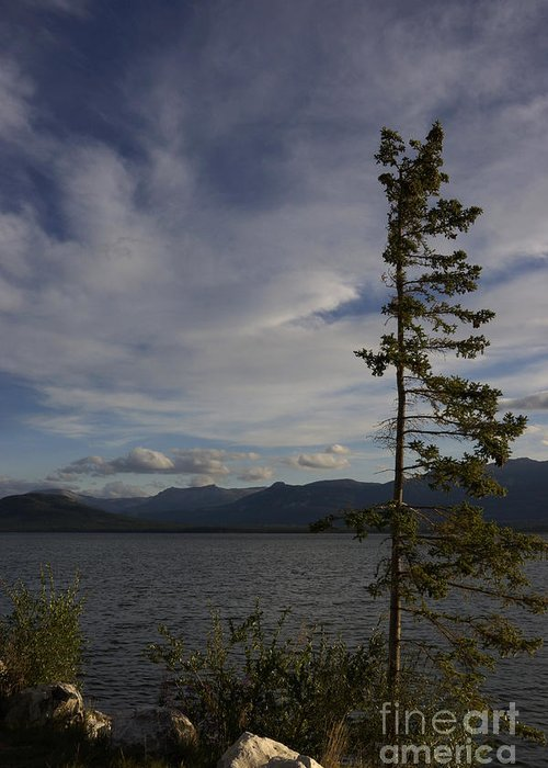 Atlin Lake Greeting Card featuring the photograph Atlin Lake by Inge Riis McDonald