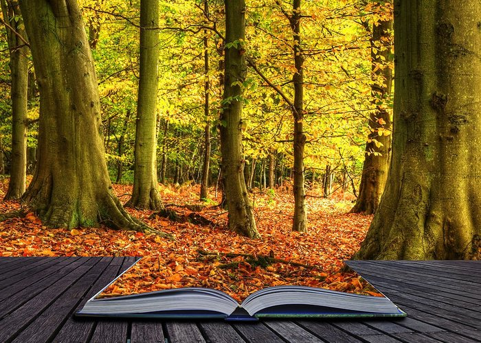Magic Greeting Card featuring the photograph Autumn Fall Forest Landscape Magic Book Pages by Matthew Gibson