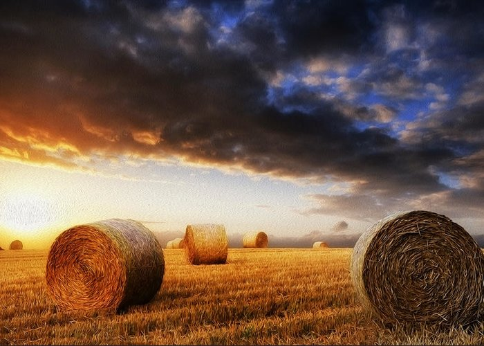 Landscape Greeting Card featuring the photograph Beautiful Hay Bales Sunset Landscape Digital Painting by Matthew Gibson