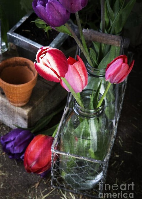 Barn Greeting Card featuring the photograph Beautiful Spring Tulips by Edward Fielding