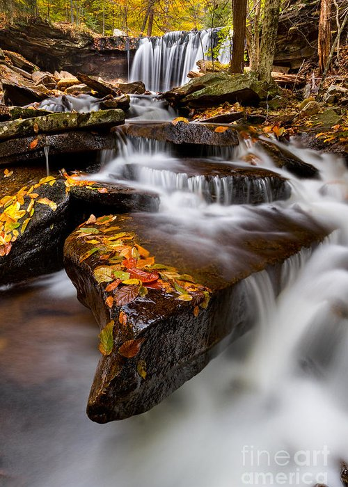 Ricketts Glen Greeting Card featuring the photograph Below Oneida Falls by Eric Gaston