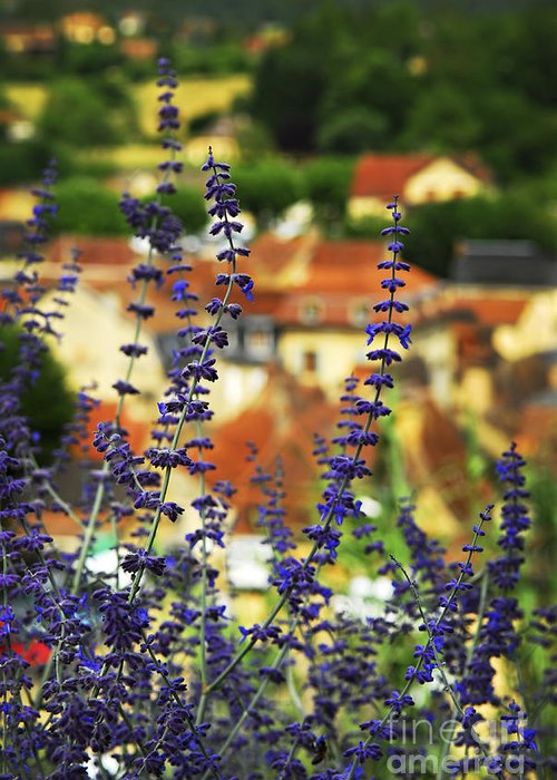 Sarlat Greeting Card featuring the photograph Blue Flowers And Rooftops In Sarlat by Elena Elisseeva