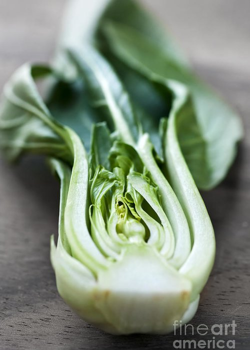 Bok Greeting Card featuring the photograph Bok Choy by Elena Elisseeva