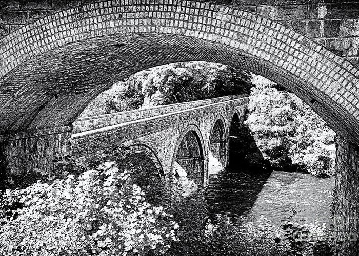 Black Greeting Card featuring the photograph Bridge Under A Bridge by Jane Rix