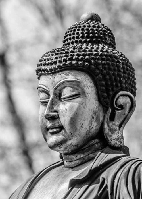 Asia Greeting Card featuring the photograph Buddha - Siddhartha Gautama - In Black And White by Colin Utz