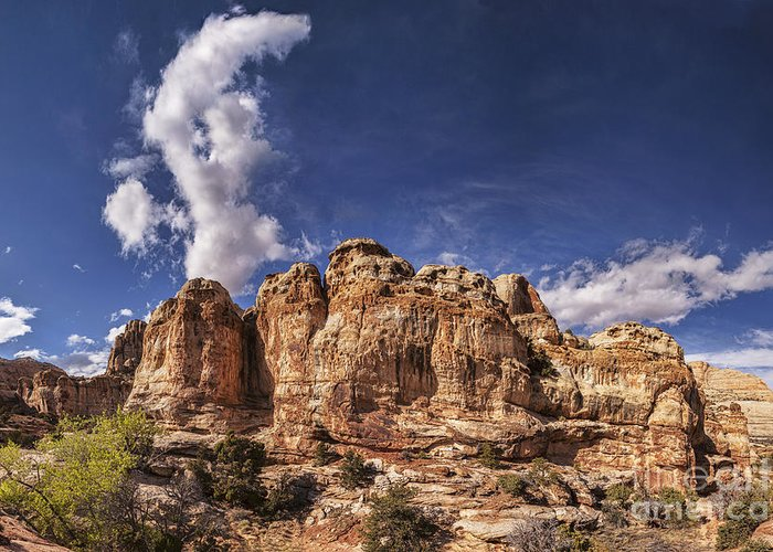 Capitol Reef Greeting Card featuring the photograph Capitol Reef National Park Utah Usa by Colin and Linda McKie